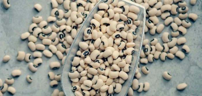 A photo of dried beans, a cheap filling for a weighted blanket. Photo by Jasmine Waheed via unsplash.com